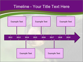 0000086367 PowerPoint Template - Slide 28