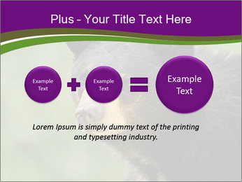 0000086367 PowerPoint Template - Slide 75