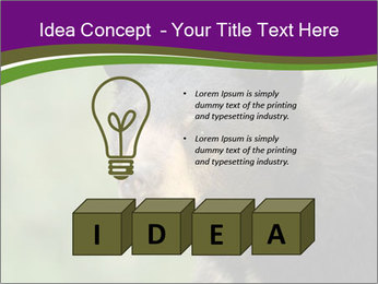 0000086367 PowerPoint Template - Slide 80