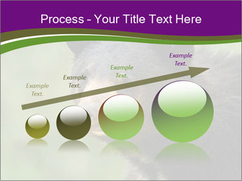 0000086367 PowerPoint Templates - Slide 87