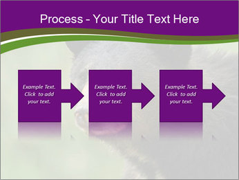 0000086367 PowerPoint Template - Slide 88