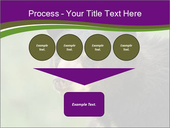 0000086367 PowerPoint Template - Slide 93