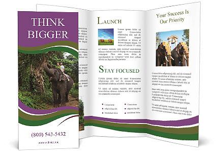 0000086401 Brochure Template