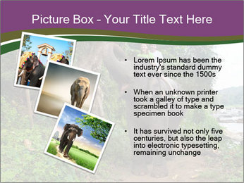 0000086401 PowerPoint Template - Slide 17