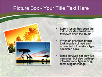 0000086401 PowerPoint Template - Slide 20