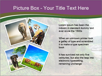 0000086401 PowerPoint Template - Slide 23