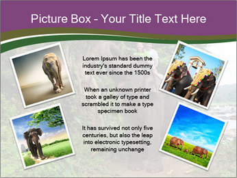 0000086401 PowerPoint Template - Slide 24