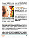 0000086411 Word Templates - Page 4