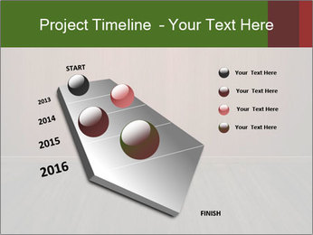 0000086413 PowerPoint Template - Slide 26