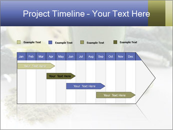 0000086419 PowerPoint Template - Slide 25