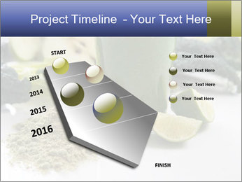 0000086419 PowerPoint Template - Slide 26