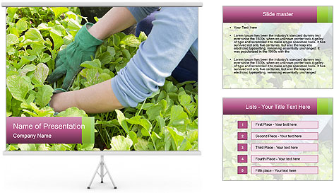 0000086420 PowerPoint Template
