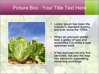 0000086420 PowerPoint Template - Slide 13