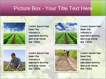 0000086420 PowerPoint Template - Slide 14
