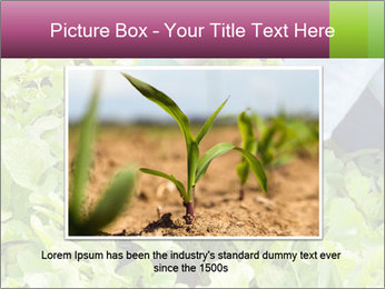 0000086420 PowerPoint Template - Slide 15