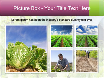 0000086420 PowerPoint Templates - Slide 19