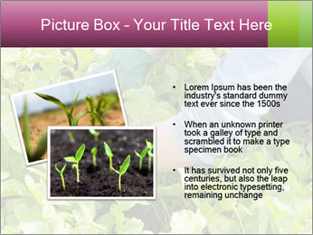 0000086420 PowerPoint Template - Slide 20