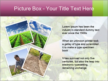 0000086420 PowerPoint Templates - Slide 23