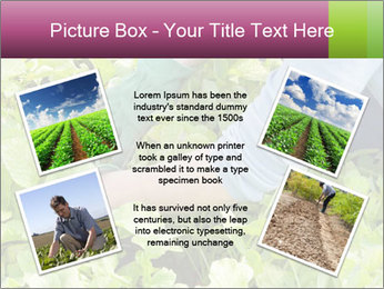 0000086420 PowerPoint Template - Slide 24