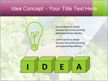 0000086420 PowerPoint Template - Slide 80