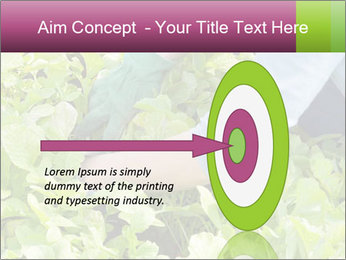 0000086420 PowerPoint Template - Slide 83