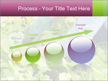 0000086420 PowerPoint Template - Slide 87