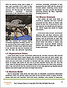 0000086425 Word Template - Page 4