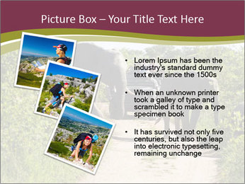 0000086434 PowerPoint Template - Slide 17