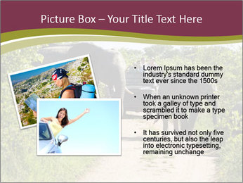 0000086434 PowerPoint Template - Slide 20