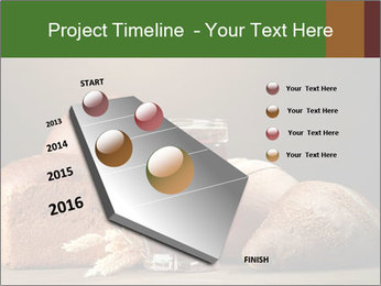 0000086444 PowerPoint Template - Slide 26