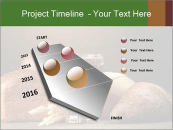 Tankard of kvass PowerPoint Templates - Slide 26