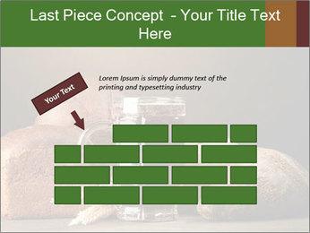 Tankard of kvass PowerPoint Template - Slide 46