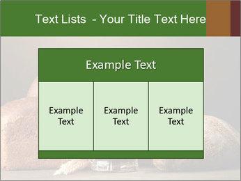Tankard of kvass PowerPoint Template - Slide 59