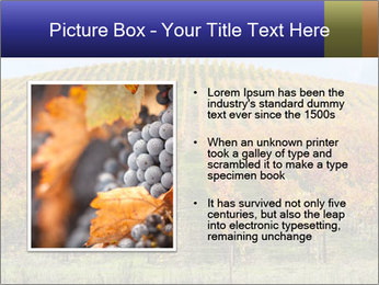 0000086445 PowerPoint Templates - Slide 13