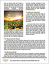 0000086445 Word Templates - Page 4