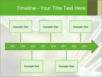 0000086446 PowerPoint Template - Slide 28