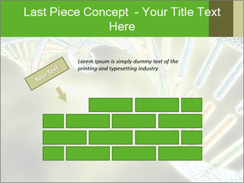 0000086446 PowerPoint Template - Slide 46