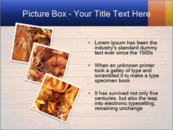 0000086452 PowerPoint Templates - Slide 17