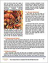 0000086452 Word Template - Page 4