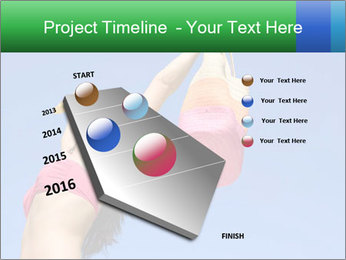 0000086455 PowerPoint Template - Slide 26