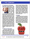 0000086458 Word Template - Page 3
