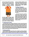0000086458 Word Template - Page 4