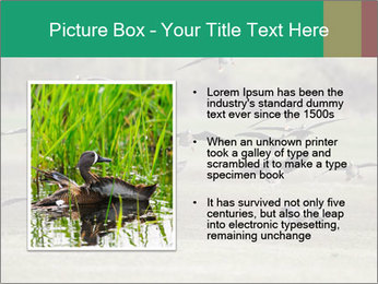 0000086464 PowerPoint Template - Slide 13
