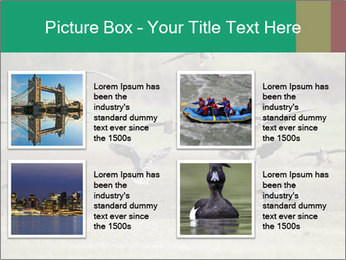 0000086464 PowerPoint Template - Slide 14