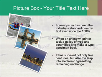 0000086464 PowerPoint Template - Slide 17