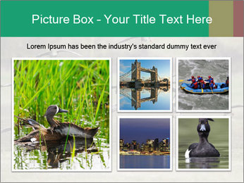0000086464 PowerPoint Template - Slide 19