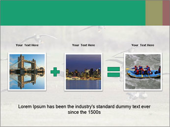 0000086464 PowerPoint Template - Slide 22