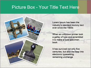 0000086464 PowerPoint Template - Slide 23