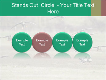 0000086464 PowerPoint Template - Slide 76