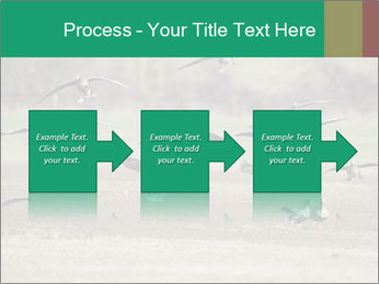 0000086464 PowerPoint Template - Slide 88